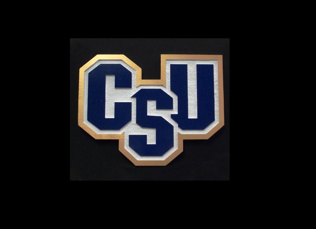 Charleston Southern University Custom Cut HDU Sign