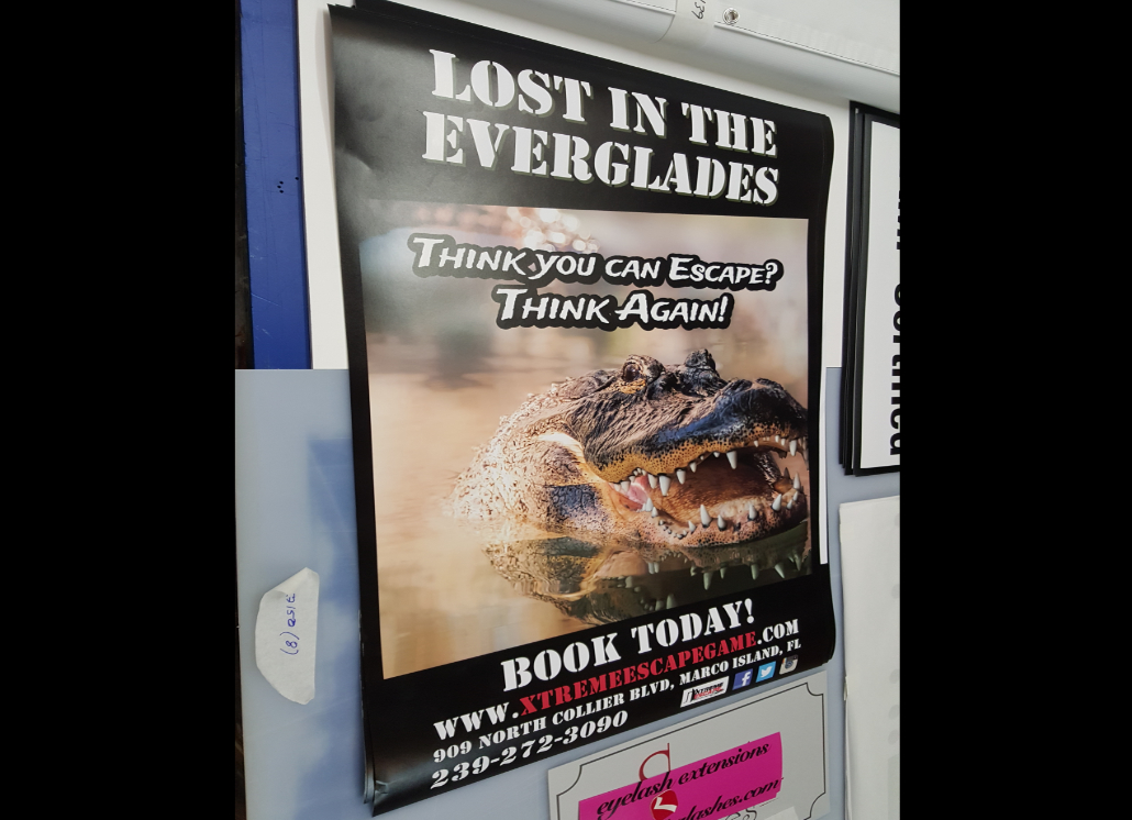 Full Color Photo Quality Printed Poster for Book Promotion