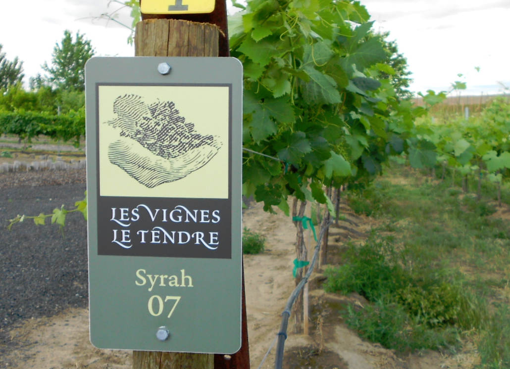 Outdoor Grape Orchard Sign with Custom Design