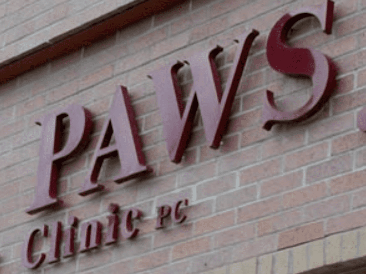 Red Injection Molded Plastic 3D Letters with text that reads: PAWS Clinic PC