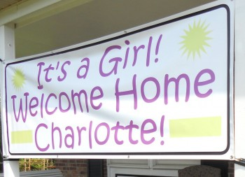 Welcome Home Banner with Vinyl Material for Domestic Signage