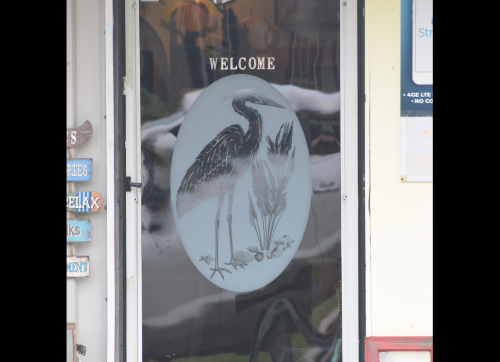 Graphic Bird Design for Business Door Window Made of Vinyl